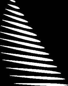 Logo_Axesail